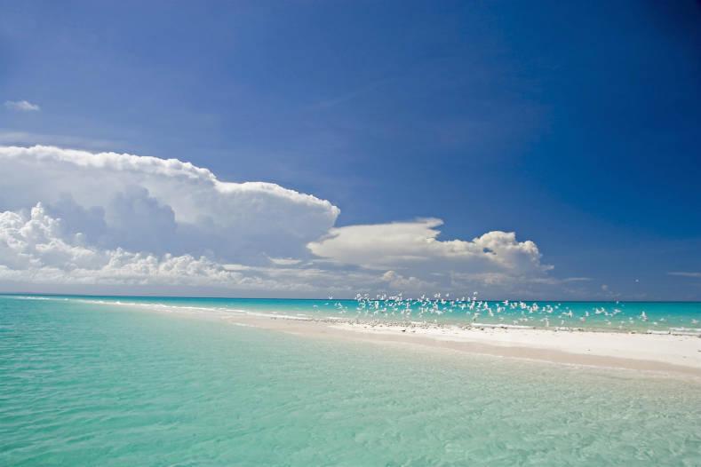 Plage à Anantara Medjumbe Island Resort
