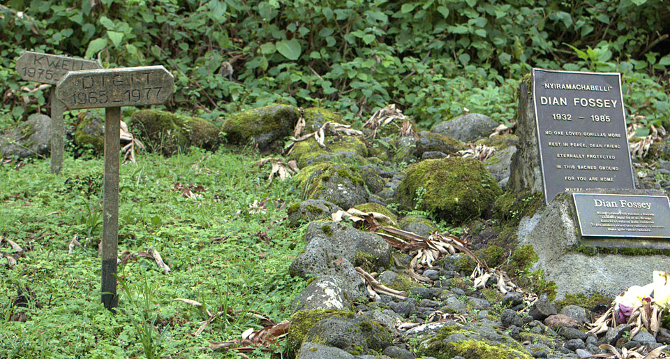 Site de la tombe de Dian Fossey