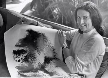 Dian Fossey et un postère de gorille