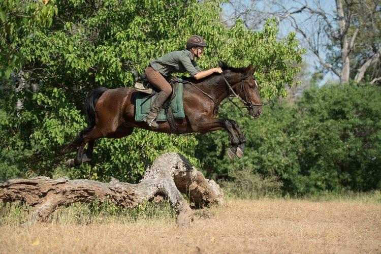 The Tuli Safari - saut à cheval