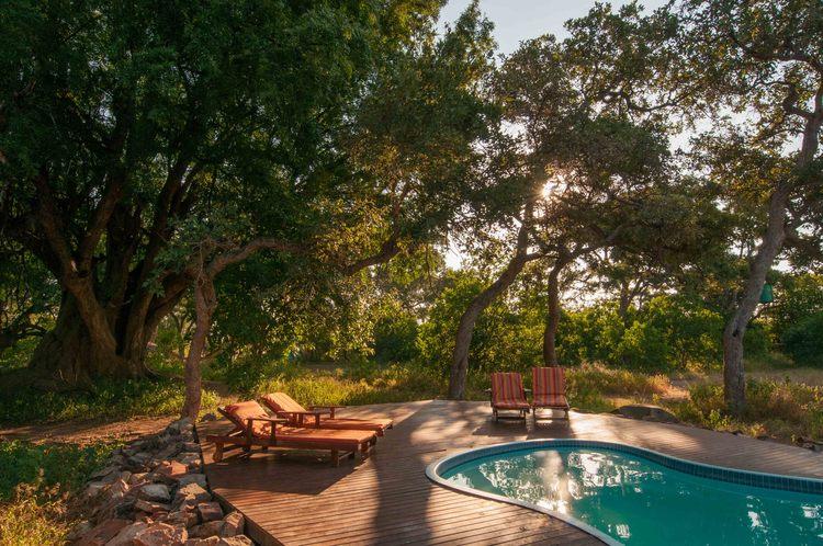The Tuli Safari - piscine d'un camp