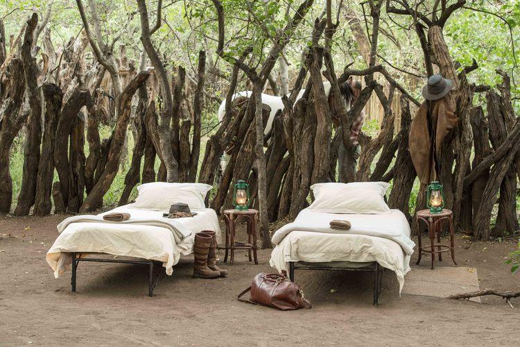 The Tuli Safari - nuit sous les étoiles