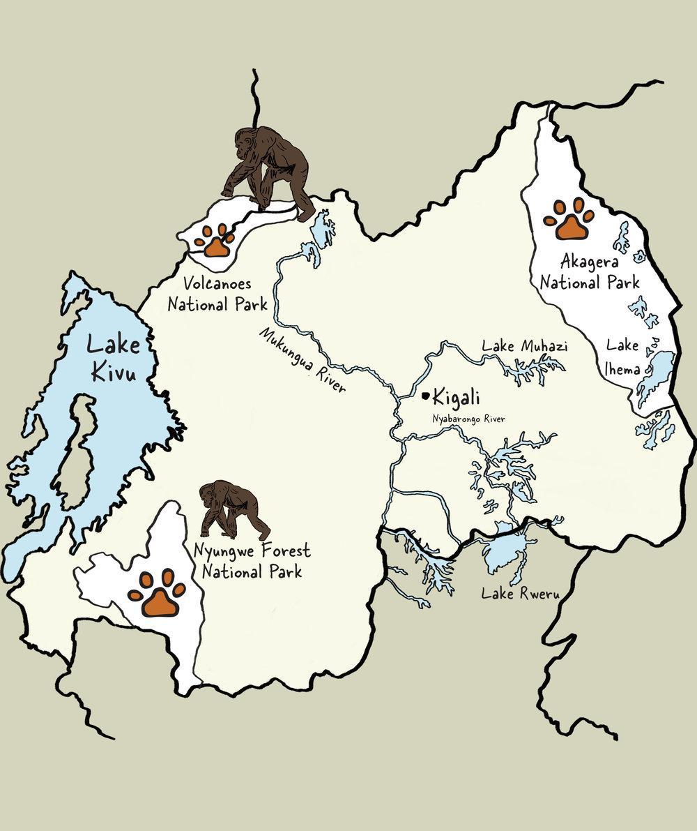Carte du Rwanda © www.afriquesurmesure.com Sàrl