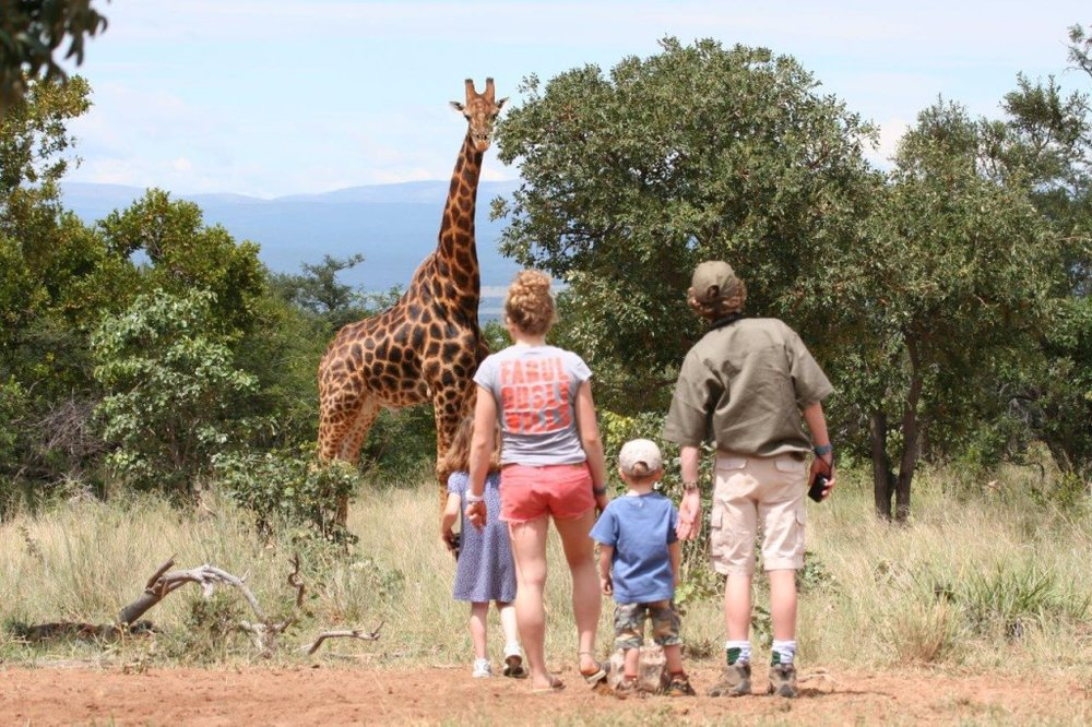 Safari en famille -