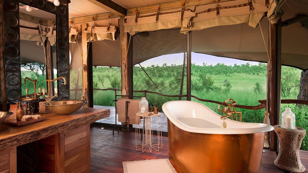 Safari de luxe en Afrique -