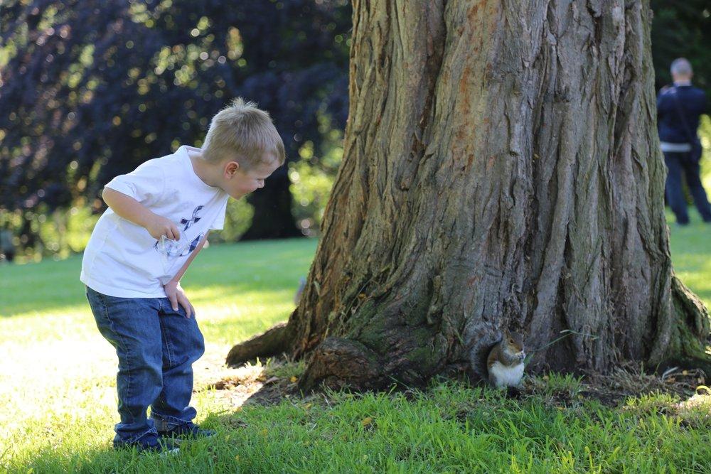 Feeding the squirrels in Hyde Park