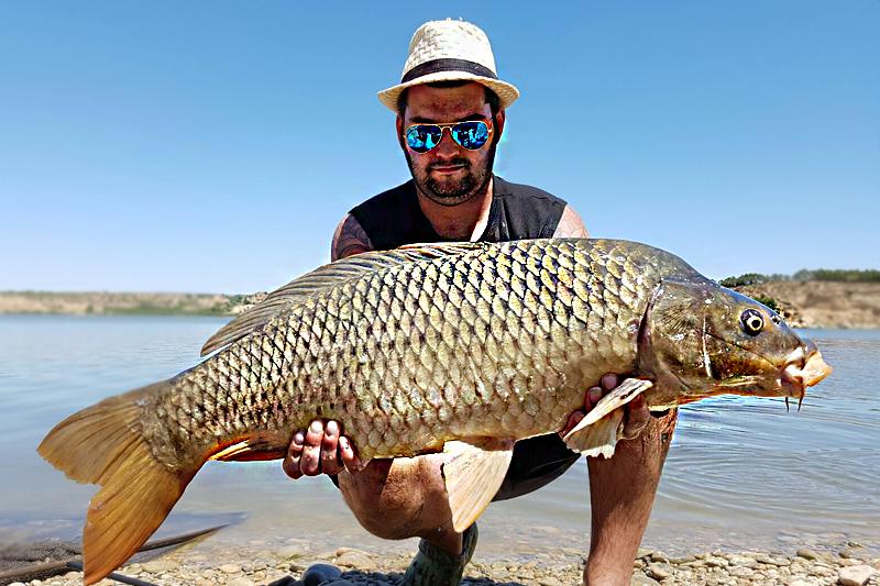 fishpic6.png
