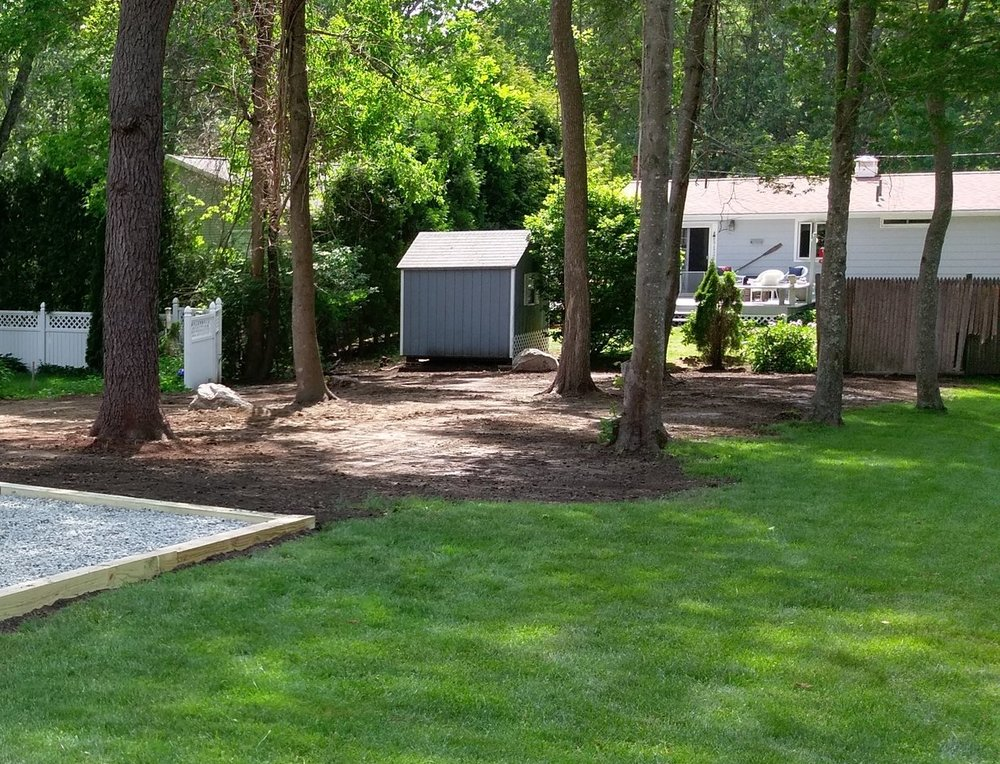 Before a lawn renovation