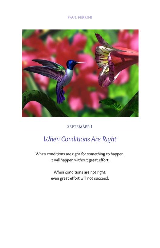 Lightfor the Soul 8.10.17newcvr232.jpg