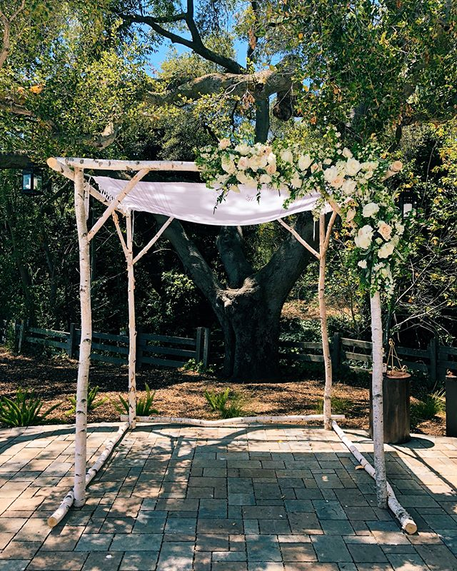 this arch came out so dreamy!! Big thanks to @erin.windacrefarm and @hs_harue for all your help yesterday!