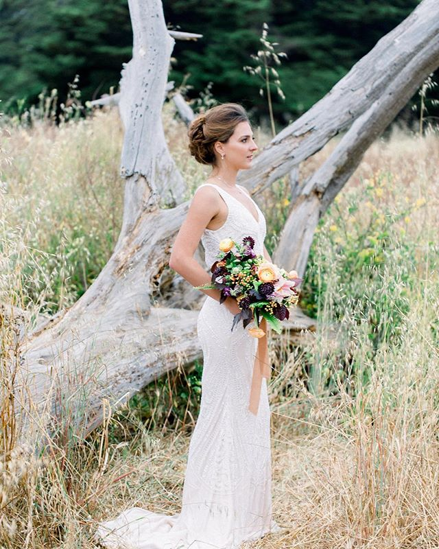 always a sucker for a dead tree backdrop 🌾 photography: @dejoyphotography // bridal attire: @epiphanyboutique_carmel // MUAH: @beautifulone_makeup_hair // model: @anniepilberg