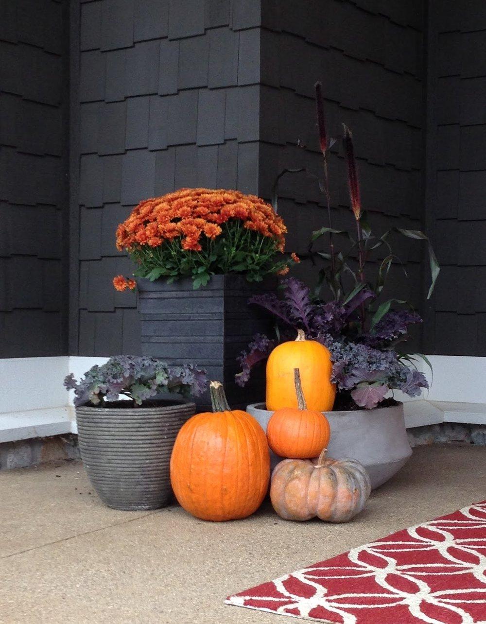 fall planter grouping pumpkins mum kale
