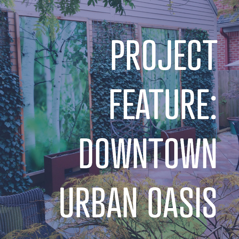 09-05-16 Project feature downtown urban oasis.jpg