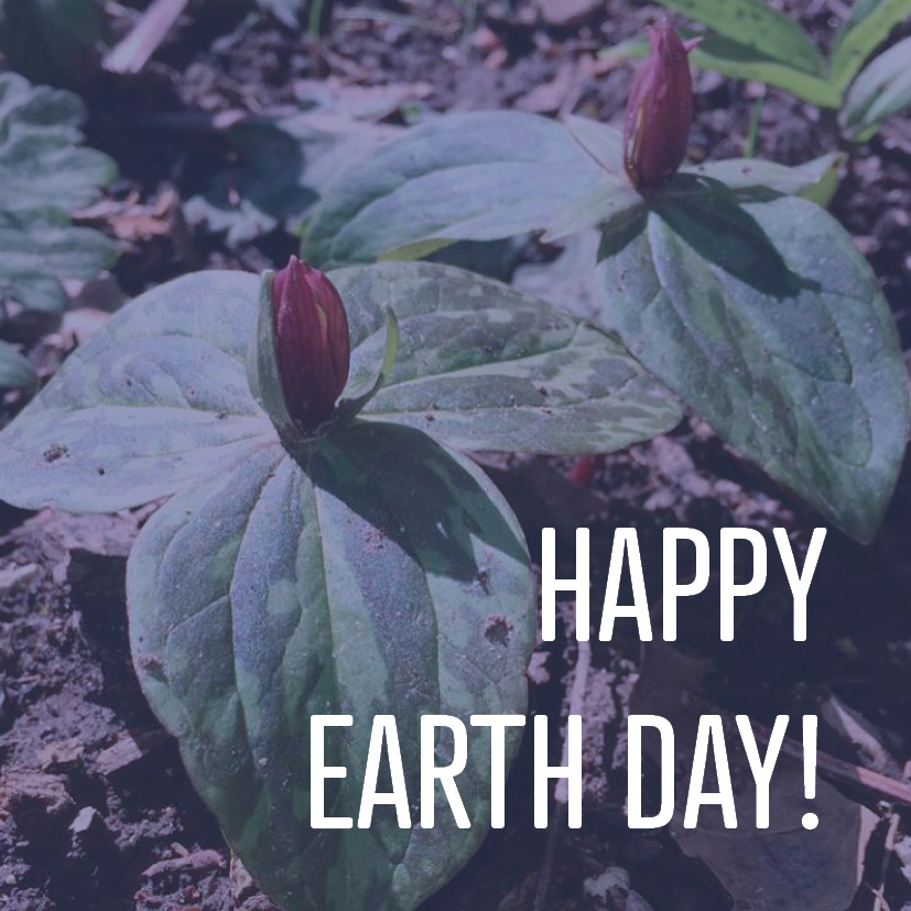 04-21-17 happy earth day.jpg
