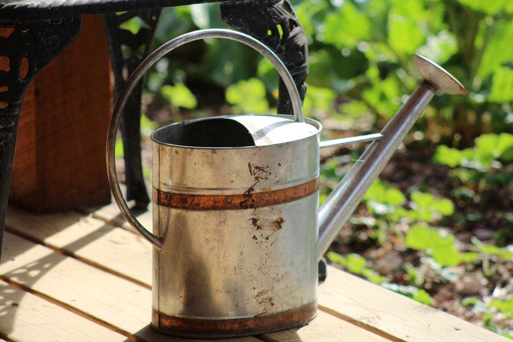 watering-can-2691568_1920.jpg