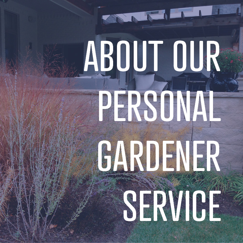 04-25-16 about our personal gardener service.jpg