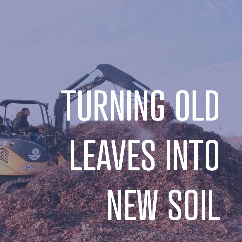 12-09-16 turning old leaves into new soil.jpg