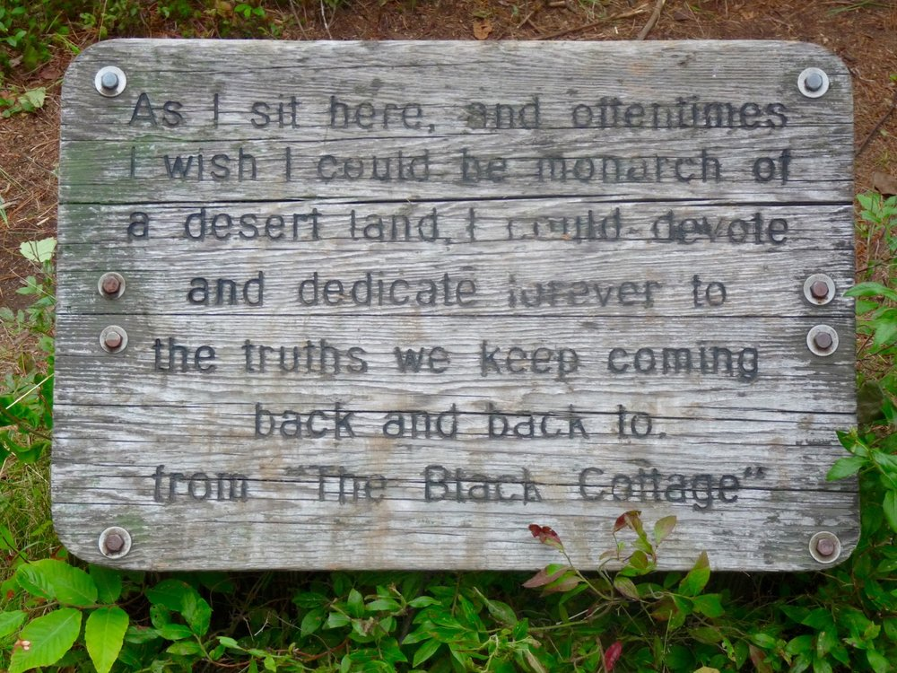 Some thoughts from Robert Frost. What is it that you keep coming back to?