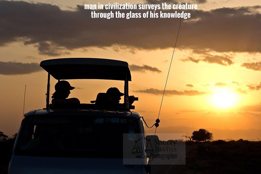 C_safari sunset2_beston.jpg