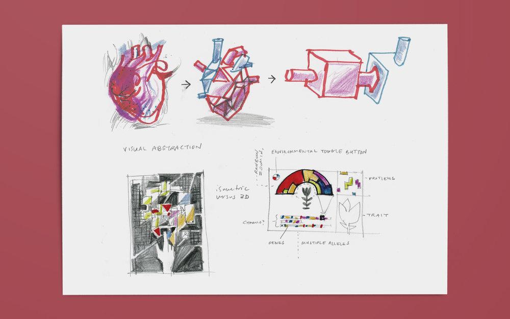 sim_sketches_2.jpg