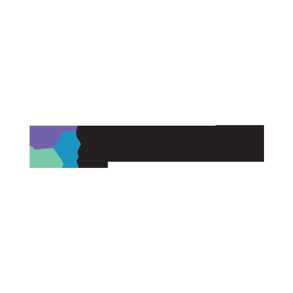 Saudi Skill Standards.png