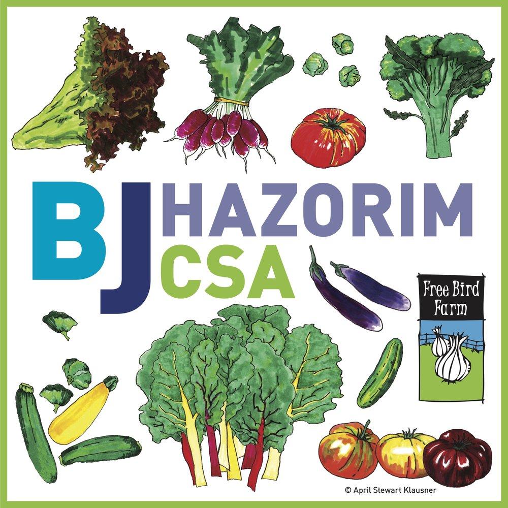Logo for CSA