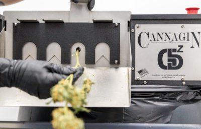 CannaGin-2-400x256.jpg