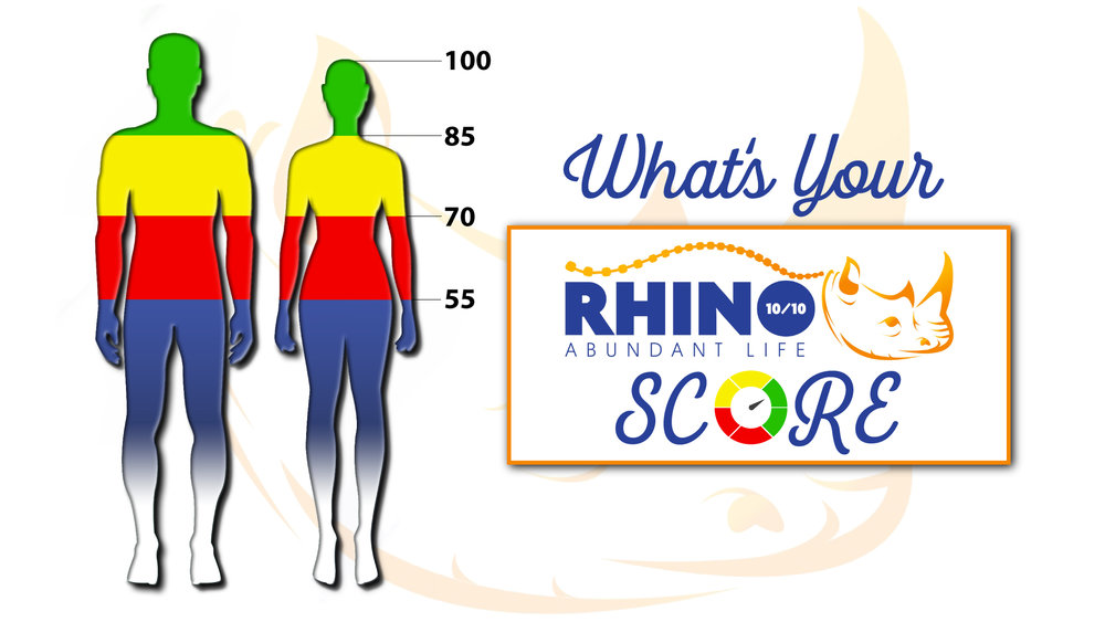 Rhino 1010 Redding CA Chiropractic First.jpg