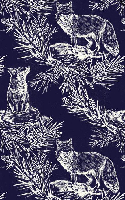 Snow Fox Wallpaper