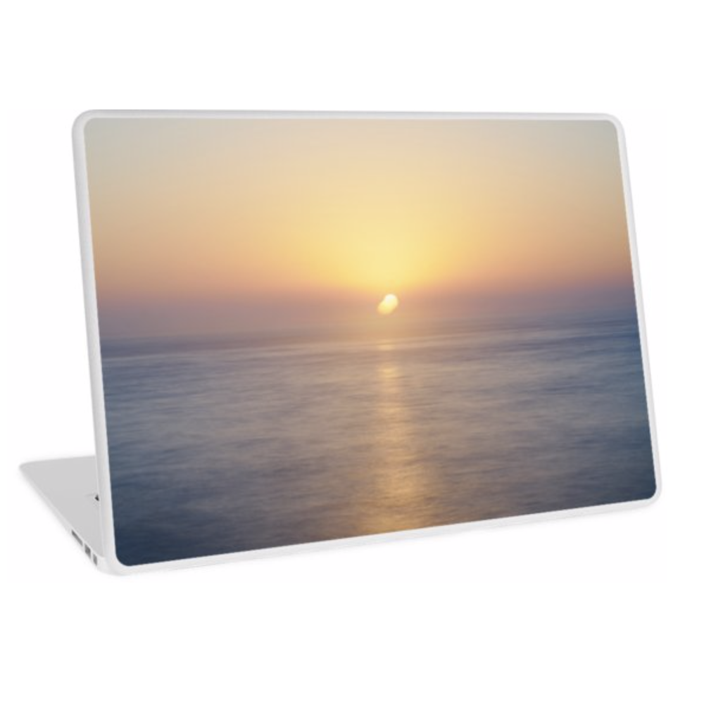 Laptop Skins / Stickers