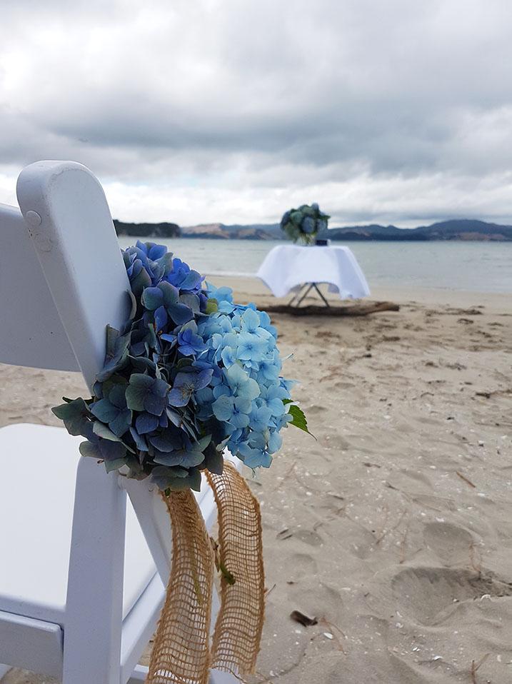 hydrangea-beach.jpg