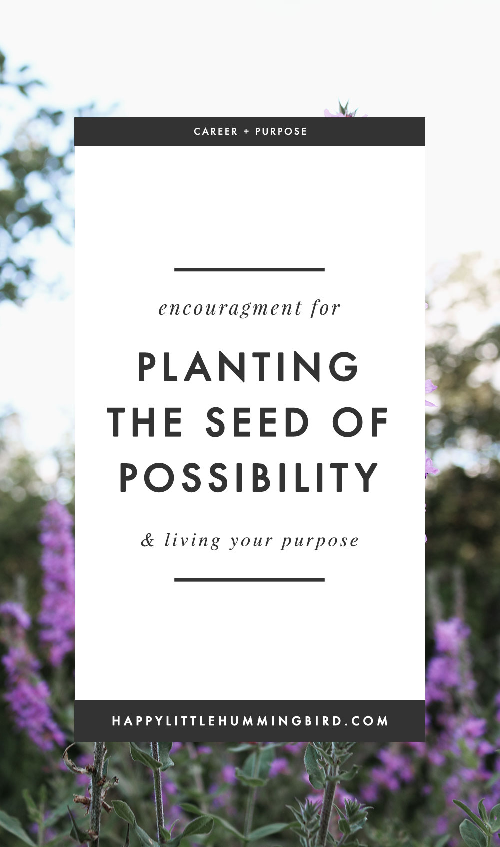Do you lack a belief in yourself or your dreams thinking that it can't be done? So did I. This is an encouraging post for the people who were never told that they could be-or-do-anything in life. I'm here to tell you—YOU CAN! Learn why planting a tiny seed of possibility is the first step in realizing your dreams!