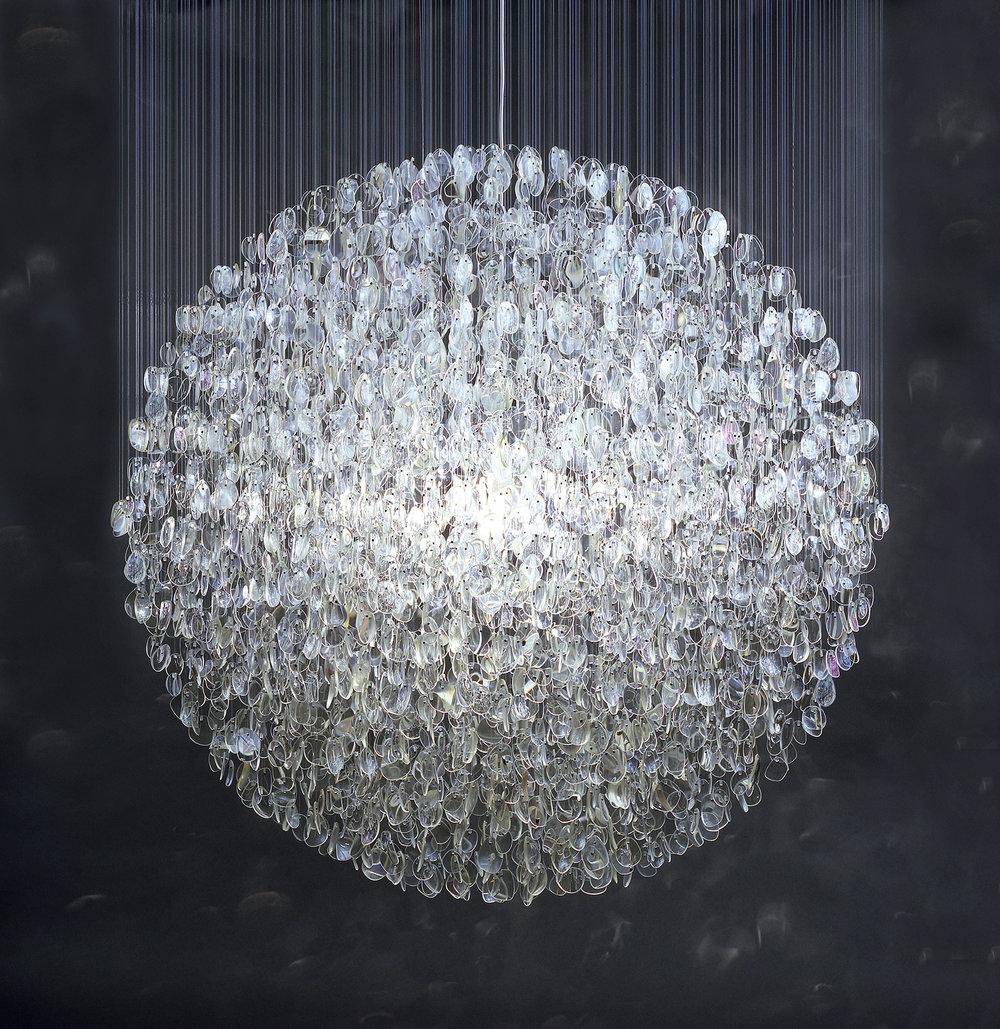 Optical  2007