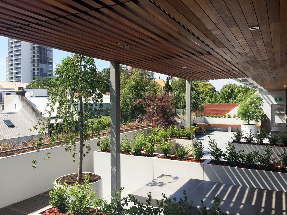 <p><strong>COMMERCIAL</strong>Rooftop Garden</p>