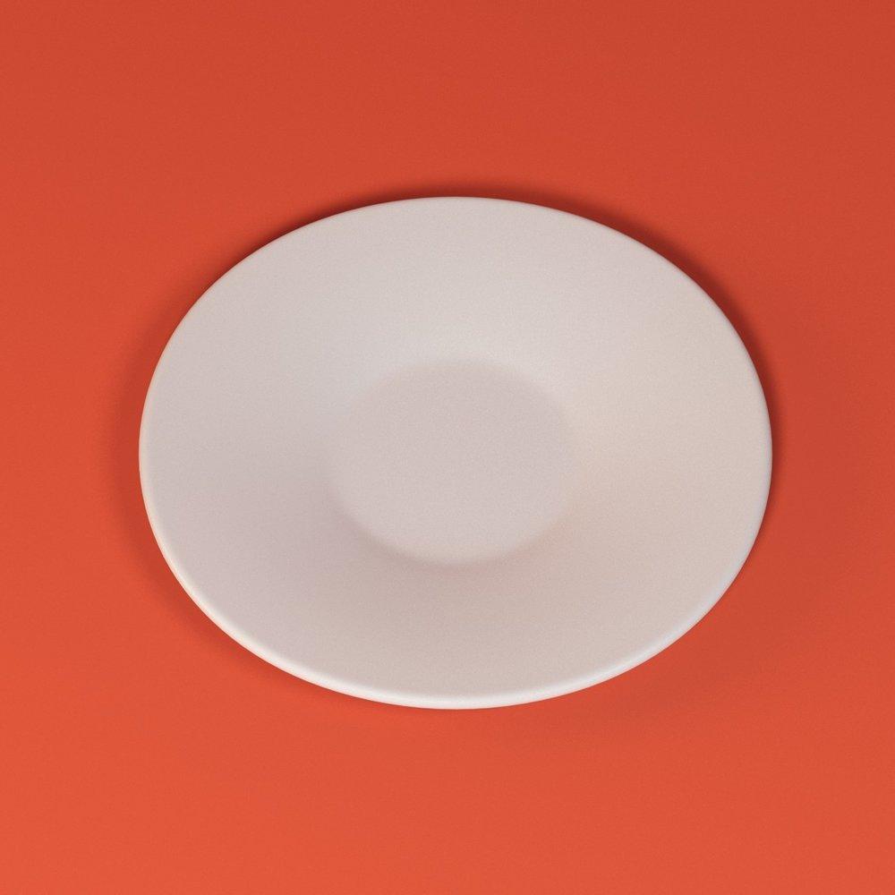 plate_v1_1.jpg