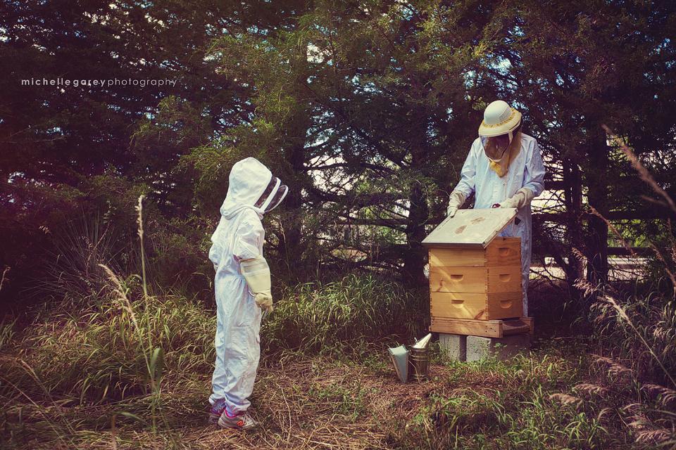 Beekeeping in Colorado
