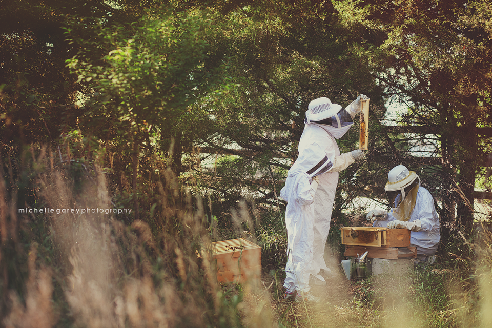 Beekeepers :: Aurora Family Photographer