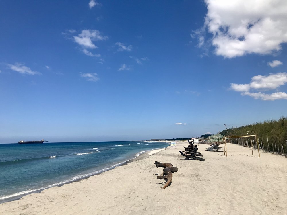 In front of the pine tree forest, were the lounging chairs for those who want to enjoy the beach and the sun or just the beach and the shade.