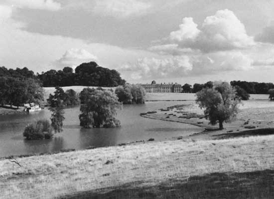 Petworth Park - Ancient and Veteran Trees Exhibition