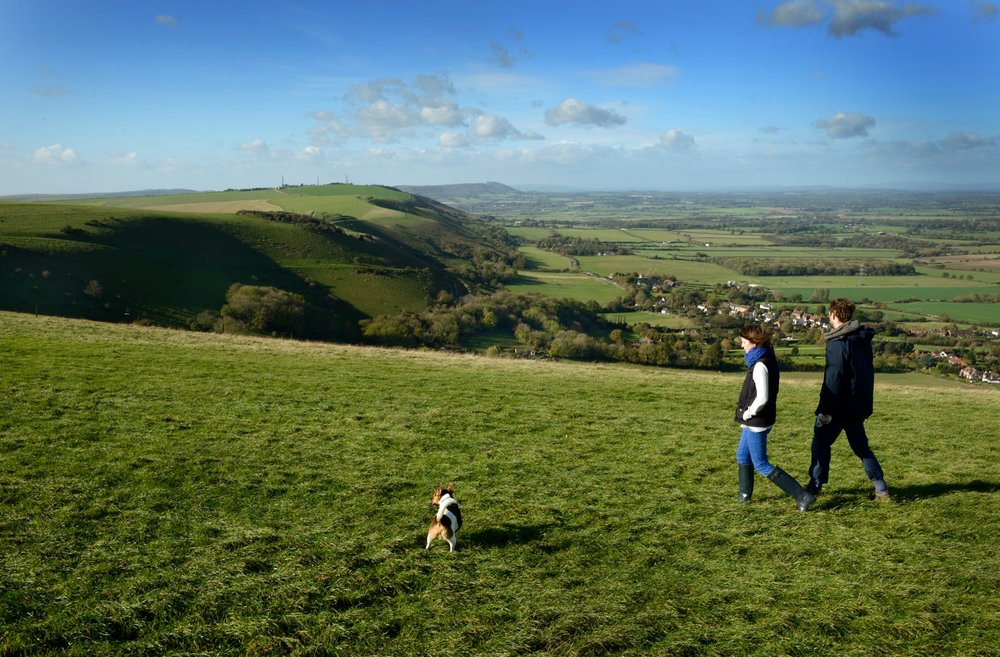 rs2160_sdnpa_w.sussex_devils_dyke_looking_west_tq258110_dsc_8992.jpg
