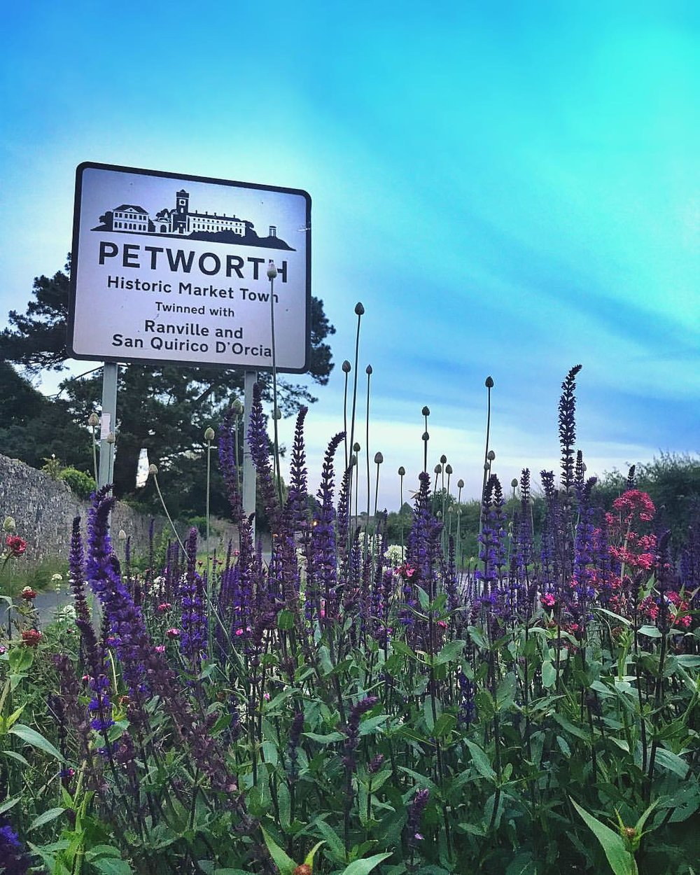 Petworth Gardens Photo Competition