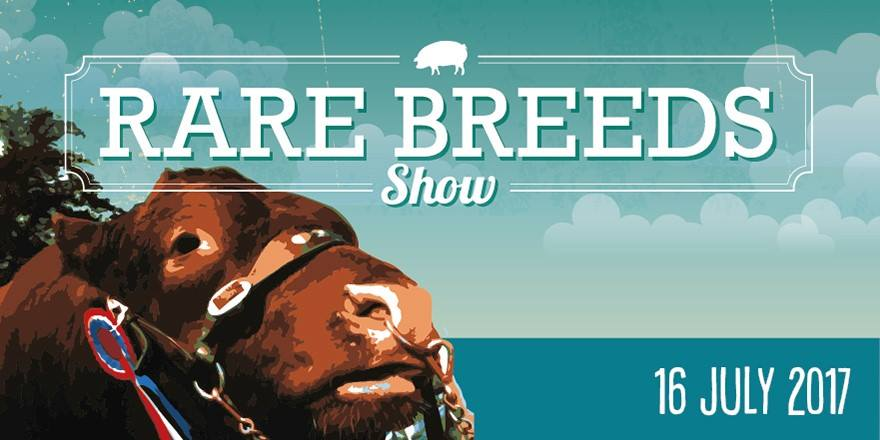 Rare & Traditional Breeds Show
