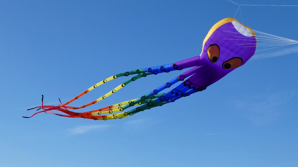Bognor Regis Kite Festival 2017