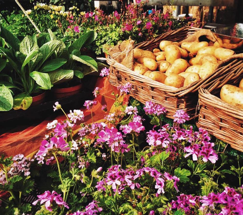Petworth Farmers Market.png