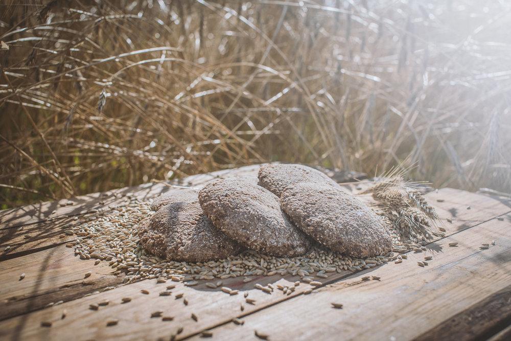 Luomuleipää viljatilan leipomosta.