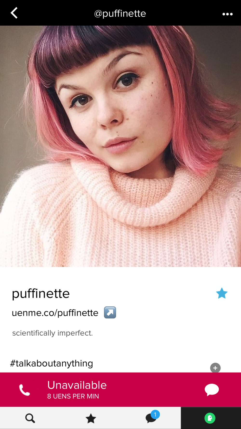 puffinette.PNG