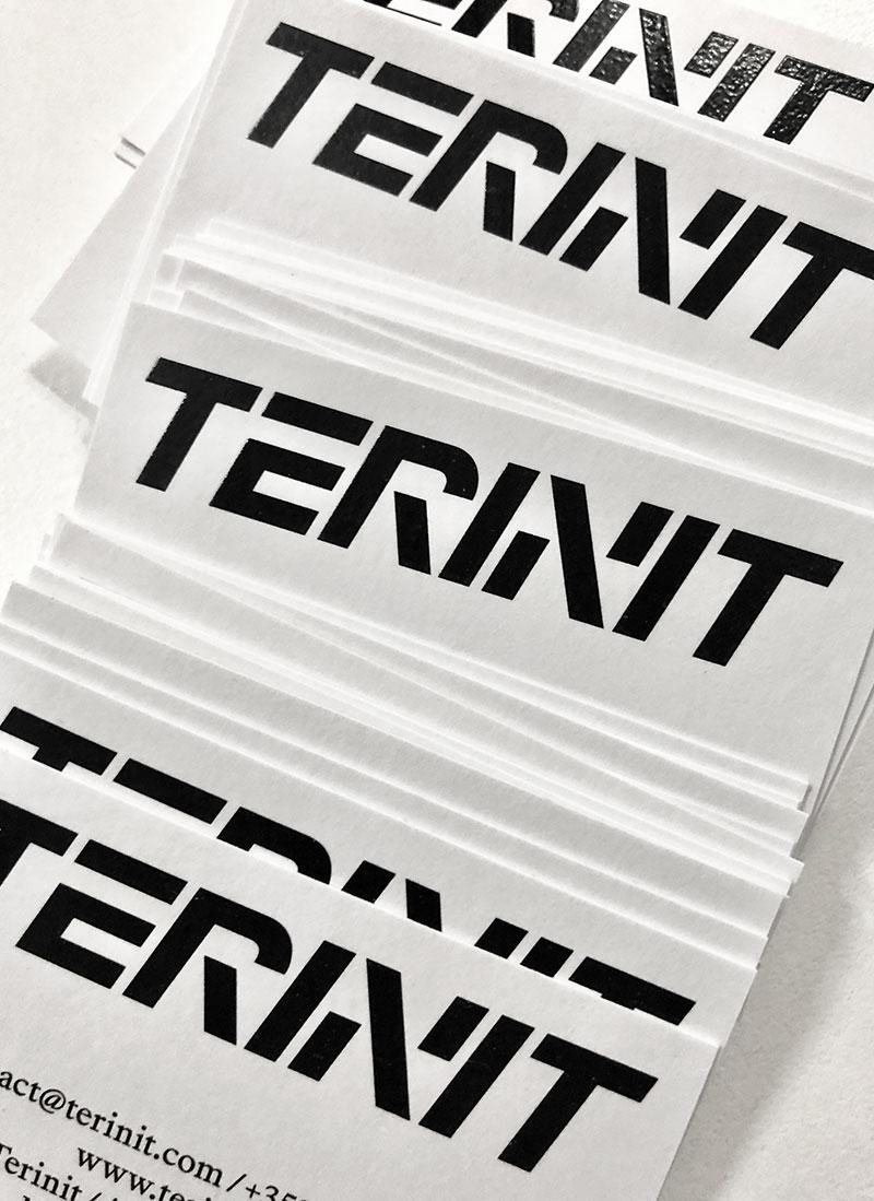 ahonen-lamberg_terinit_business_cards.jpg