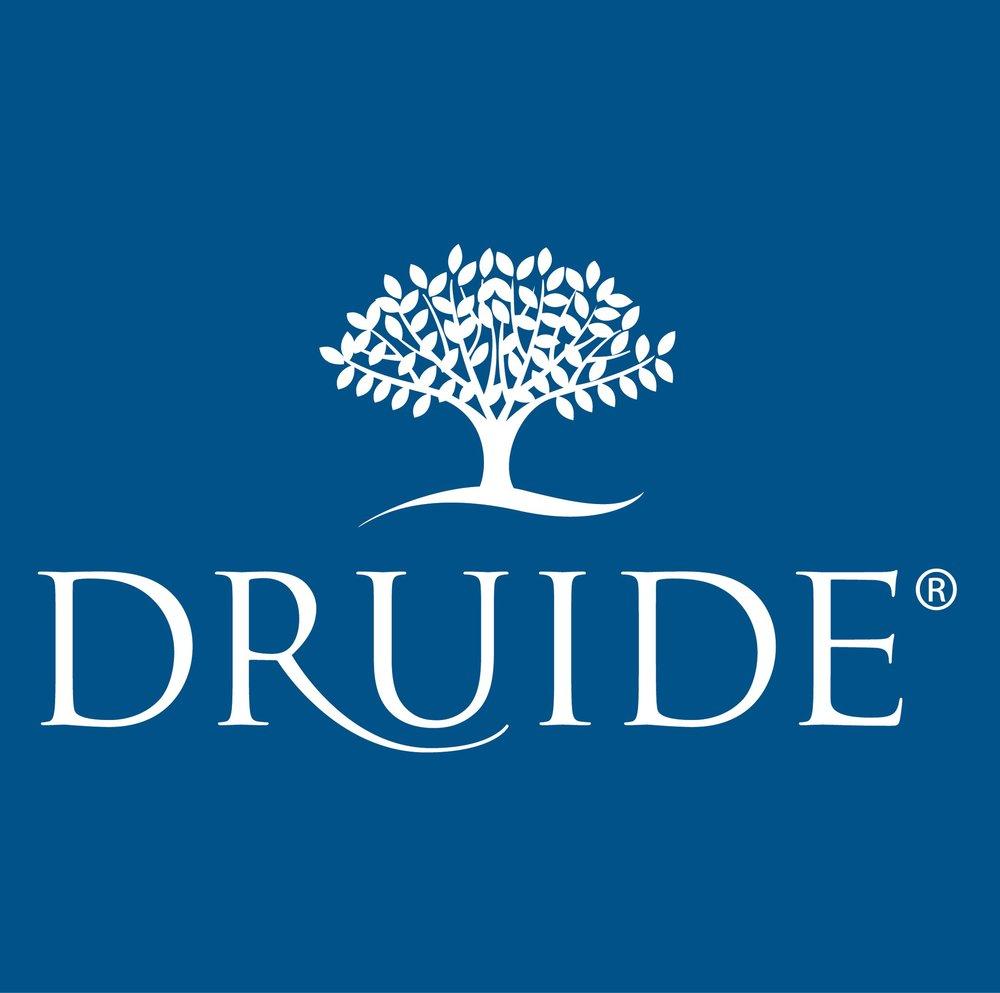 logo-druide-bleu-2.jpg