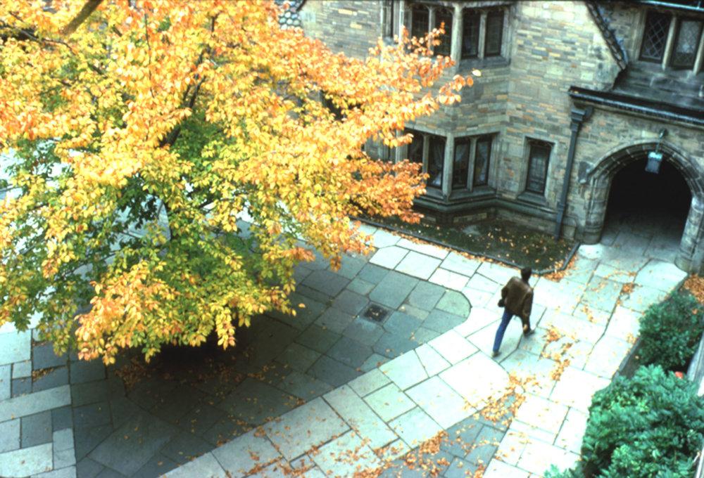 Yale_05.jpg
