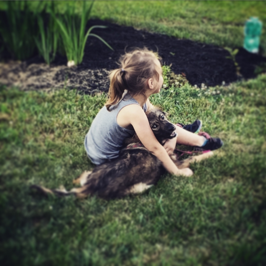 Charlottesville dog training. Girl with dog.